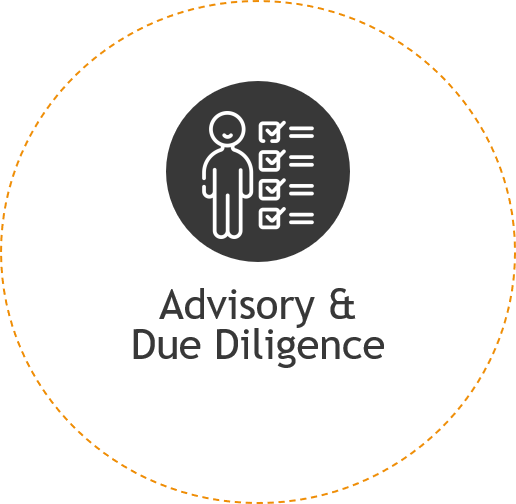 Advisory and due diligence