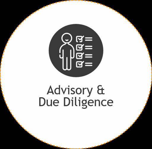 advisory & due diligence